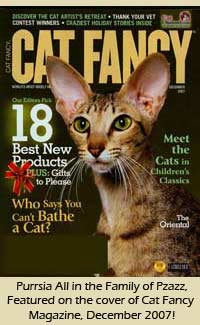 Purrsia Czttery Oriental Short Hair featured on the December 2007 cover of Cat Fancy magazine!